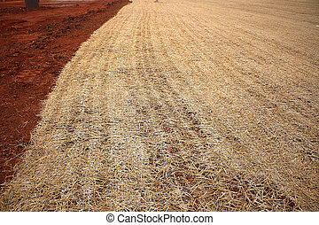 Hay Ground Cover on Construction Site - Hay ground cover at...