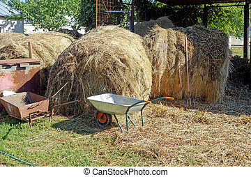Hay in the backyard