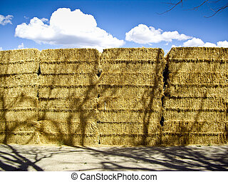 Hay on a Summers day