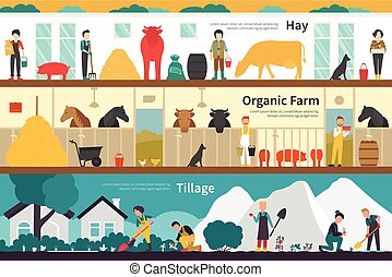 Hay Organic Farm Tillage flat interior outdoor concept web -...