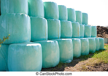 hay roles - round hay bales wrapped in green plastic and...