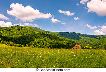 hay stack on the grassy meadow in mountain. beautiful...