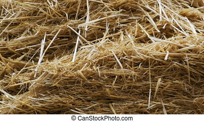 Hay stack on the ground in the village - Haystack on the...