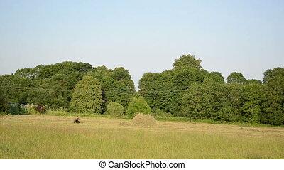 hay stack worker