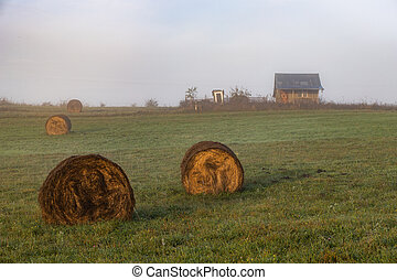 hay stacks and farm in autumn sunrise