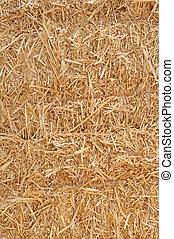 hay - bunches of hay under sunny