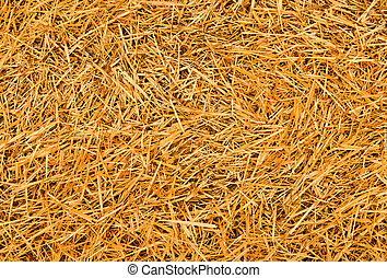 hay - straw background