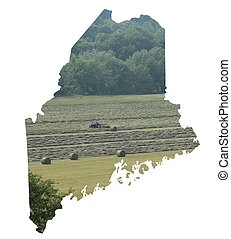 hay time in maine - hay time shown in a maine outline
