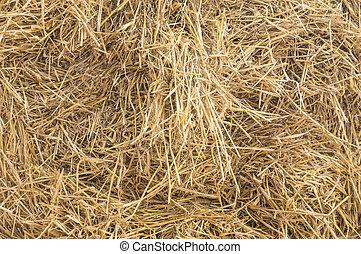 haybale in closeup