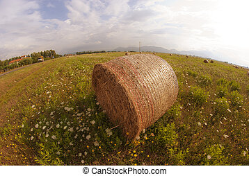 Fisheye view of a Haybale in a Tuscan Meadow, Italy