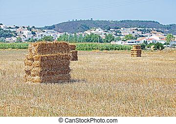 Haybales in the fields near Aljezur in Portugal