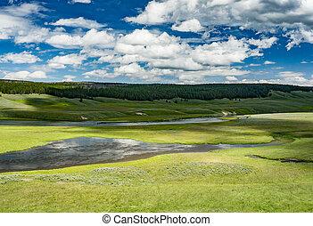 Hayden Valley, Yellowstone National Park, Wyoming.