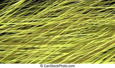 Hay.plant,rice,grain,harvest,fiber,textile