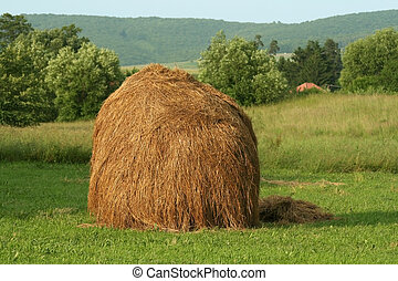 Haystack at meadow