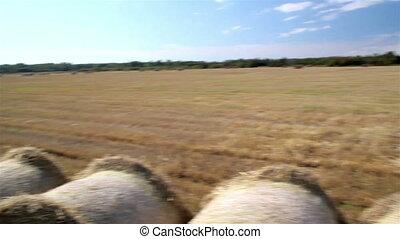 Haystack hay balls piled in open field