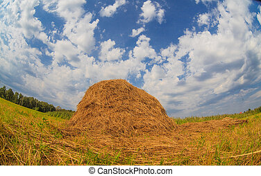 haystack in field against blue sky summer nature landscape