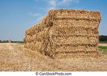 Huge haystack at the countryside of the Netherlands