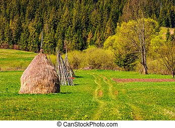 haystack near forest on hillside