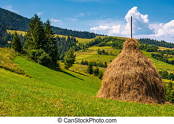 haystack on a grassy hill on a summer day. beautiful scenery...