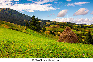 haystack on a grassy meadow in mountains. beautiful...