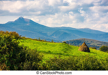 haystack on a grassy slope. ridge with high peak in the...