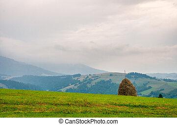 Haystack on beautiful summer plateau in Carpathian mountain