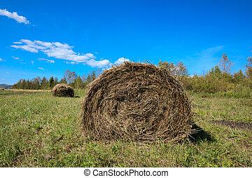 haystack on farmland with blue cloudy  sky