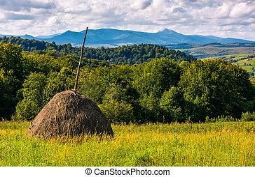haystack on grassy lawn on hillside - haystack on...