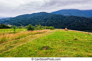 haystack on rural field in mountains. lovely scenery of...