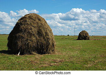 Haystack on the meadow