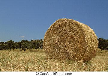 Haystack - Round haystack