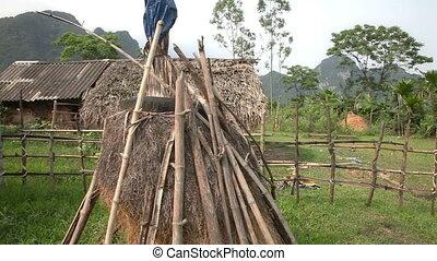 Haystack slider shoot