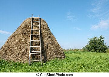 Haystack with a ladder, a horizontal picture
