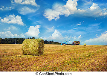 Haystack. Autumn harvest. Outdoor shot.