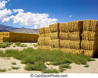 Haystacks in the high desert