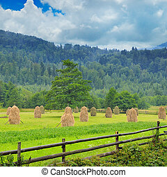 Haystacks in the mountain valley