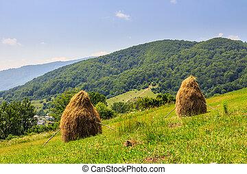 haystacks on hillside near the village
