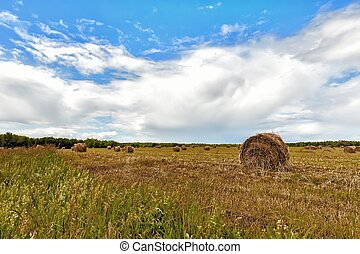 haystacks on the background of fields with mown wheat on a Sunny summer day with clouds