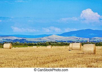 Haystacks on the Field
