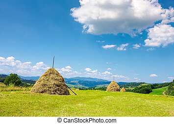 lovely rural area in mountains - Haystacks on the grassy...