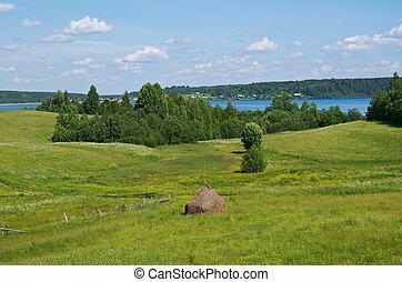 Haystacks on the summer meadow