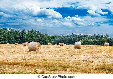 haystacks, op, de, akker