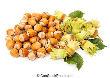 Bunch of hazelnut clusters and whole nuts