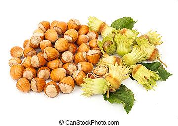 Hazelnut bunch - Bunch of hazelnut clusters and whole nuts