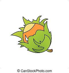 Hazelnut - Cartoon stle hazelnut vector illustration ...
