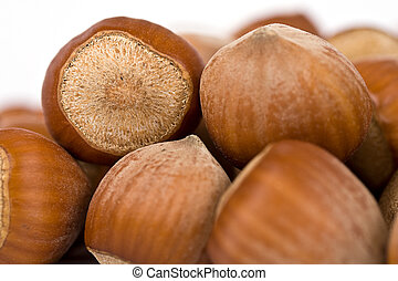 hazelnut close-up isolated over a white background
