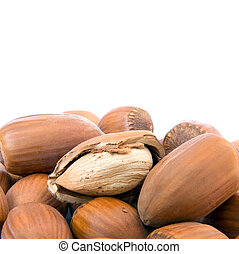 Hazelnut cutout