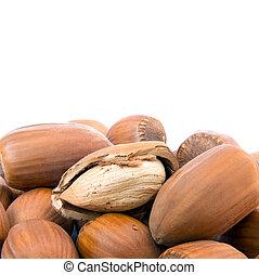 Hazelnut cutout