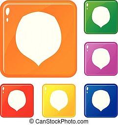 Hazelnut icons set vector color