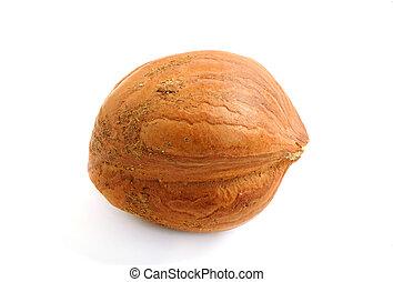 Single hazelnut isolated on white background, macro image